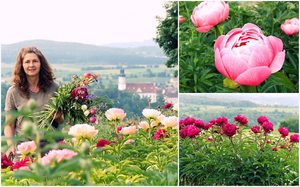 Auswahl-Blumengarten-Post1-001.jpg